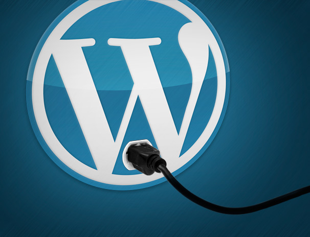 Learn as You Develop Plugins for WordPress Site